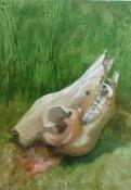 Schweinskopf, Öl auf Leinwand