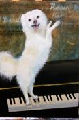 Mozarts Hund Pimperl, Mischtechnik
