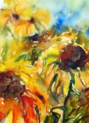 Sonnenblumen, Aquarell